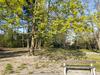 park svatby2.jpg