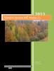 VZ_MČP21_2013.pdf