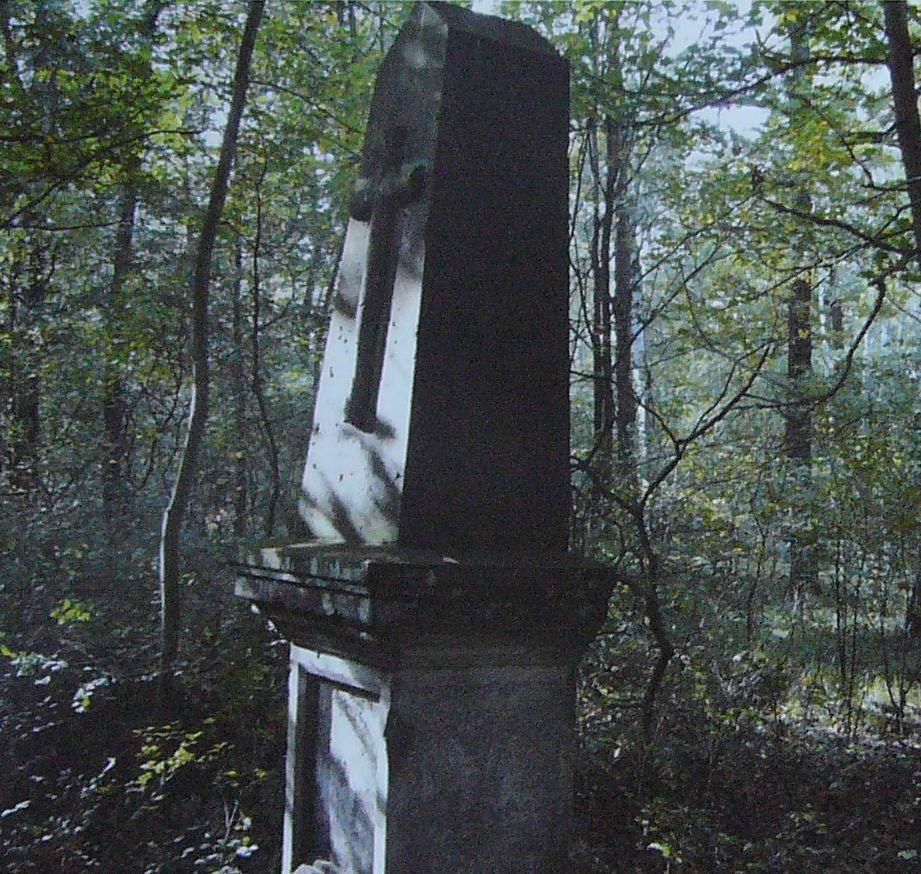 pomnik Huberta Divise.JPG