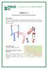 návrh 1.pdf