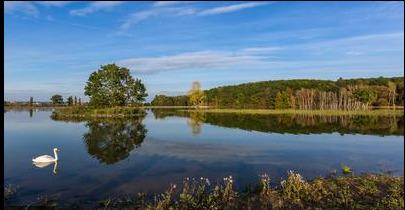 Litožnický rybník.png