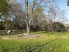 park svatby1.jpg