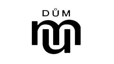 DDM - logo.png