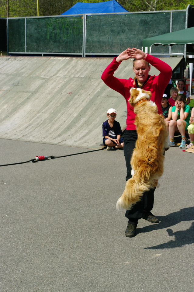 dog dancing - fenka Easy.jpg